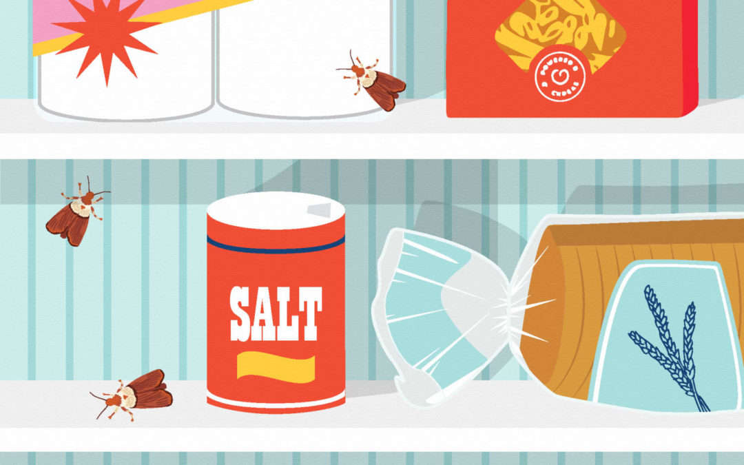 Here Are the Most Common Pests You'll Find at Home in Each State