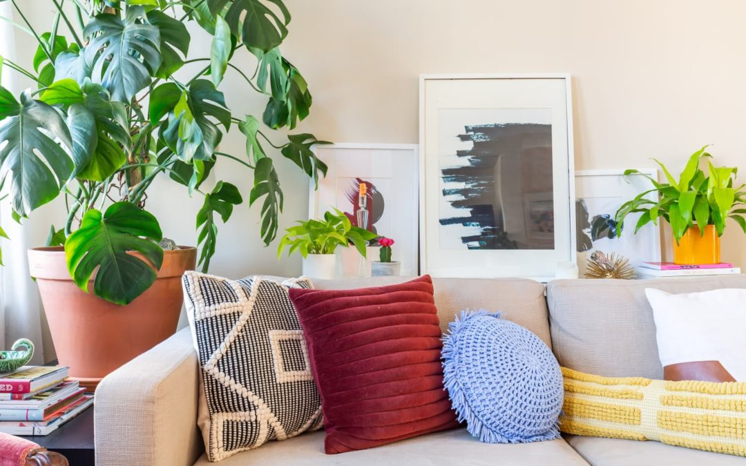 Here's What a Professional Home Stager Bought at Costco With $100