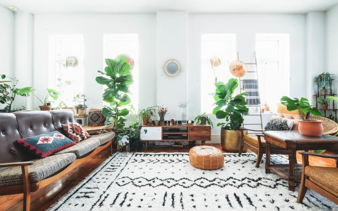 5 Patterned Rugs That Will Instantly Liven Up Your Space (and They're on Sale!)