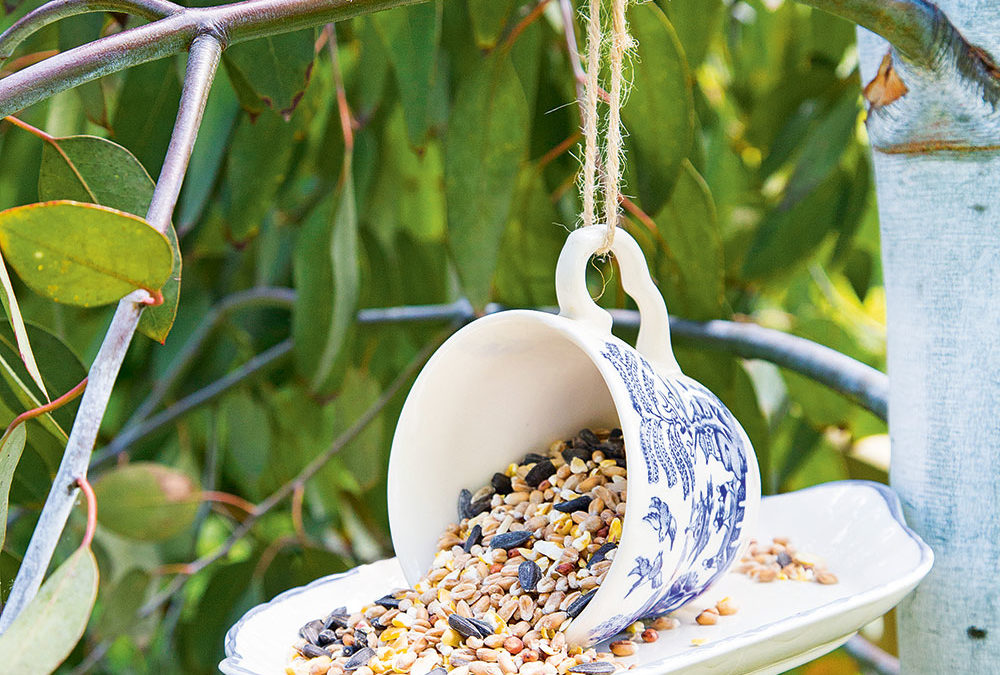 Wildlife garden ideas – 17 easy ways to turn your outdoor space into a haven for wildlife