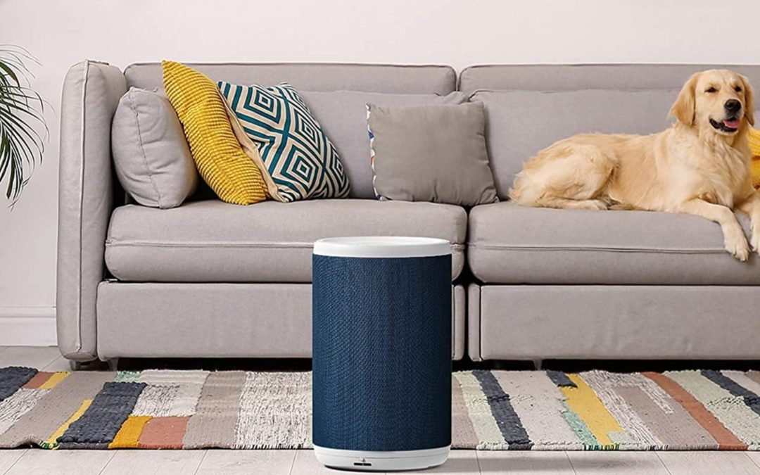 I Tried a Bunch of Air Purifiers for the First Time, and This Was the Clear Winner