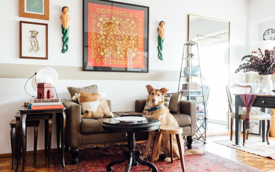 How Expensive Is Getting a Dog, Really? A Trainer Weighs In