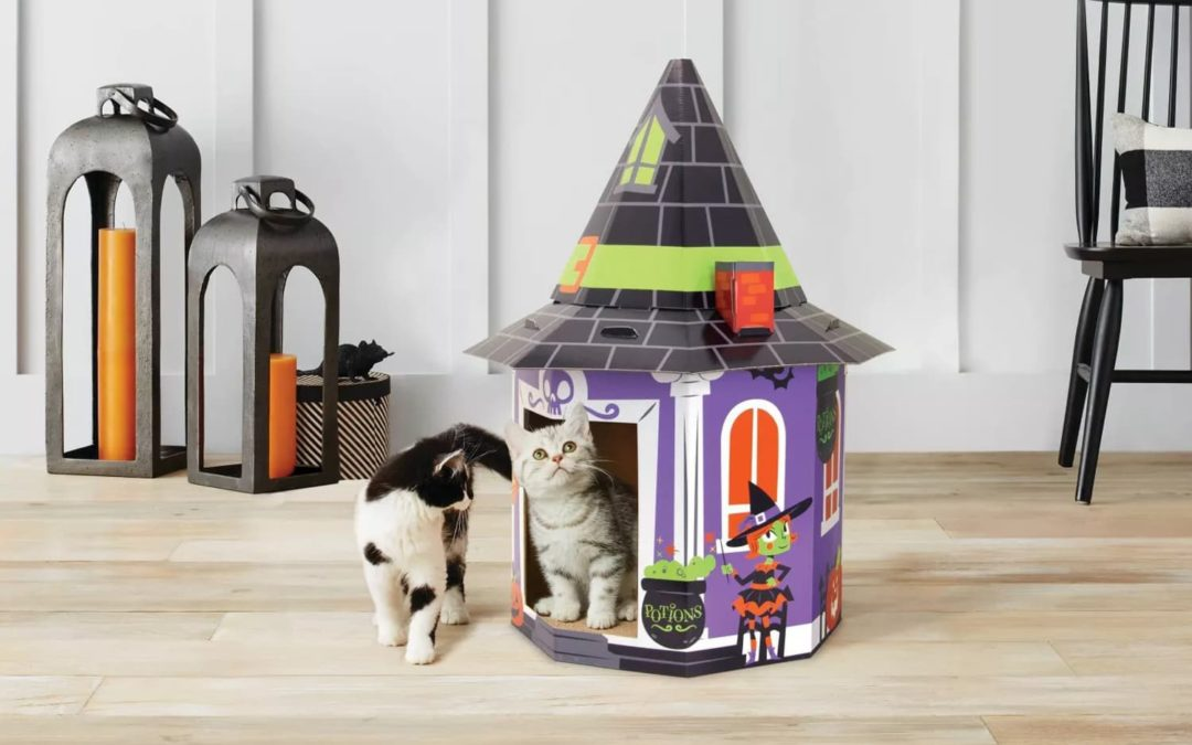 Target Is Selling Halloween-Themed Cat Scratchers